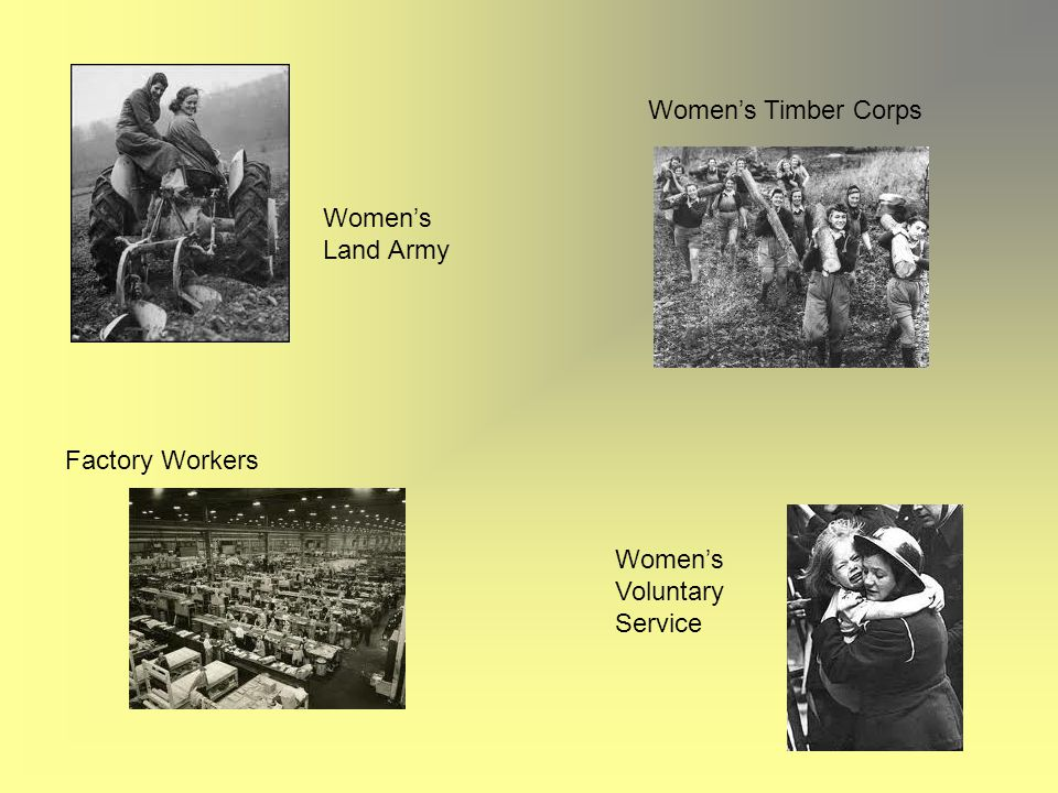 Women's Timber Corps Women's Land Army Factory Workers Women's Voluntary Service