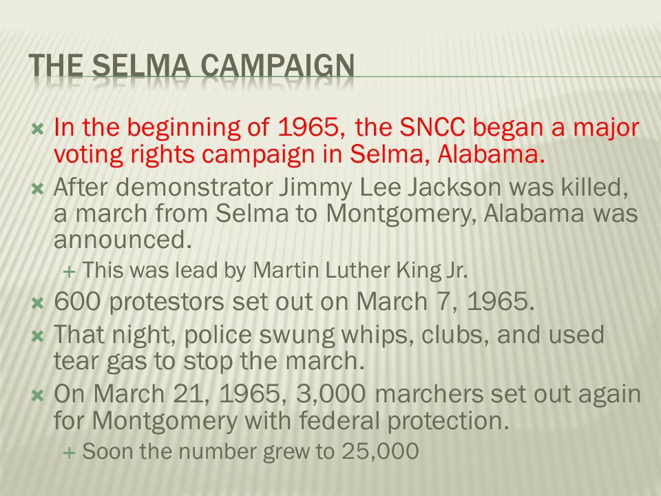The Selma Campaign In the beginning of 1965, the SNCC began a major voting rights campaign in Selma, Alabama.
