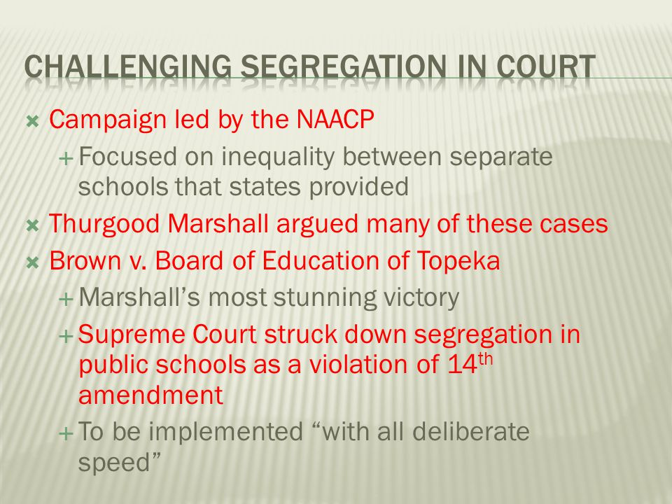 Challenging Segregation in Court