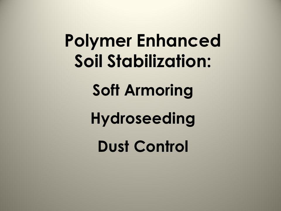 Polymer Enhanced Soil Stabilization: