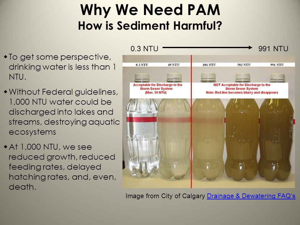 Why We Need PAM How is Sediment Harmful