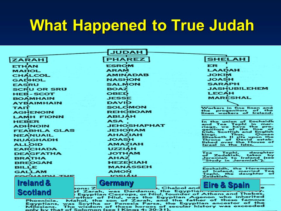 What Happened to True Judah