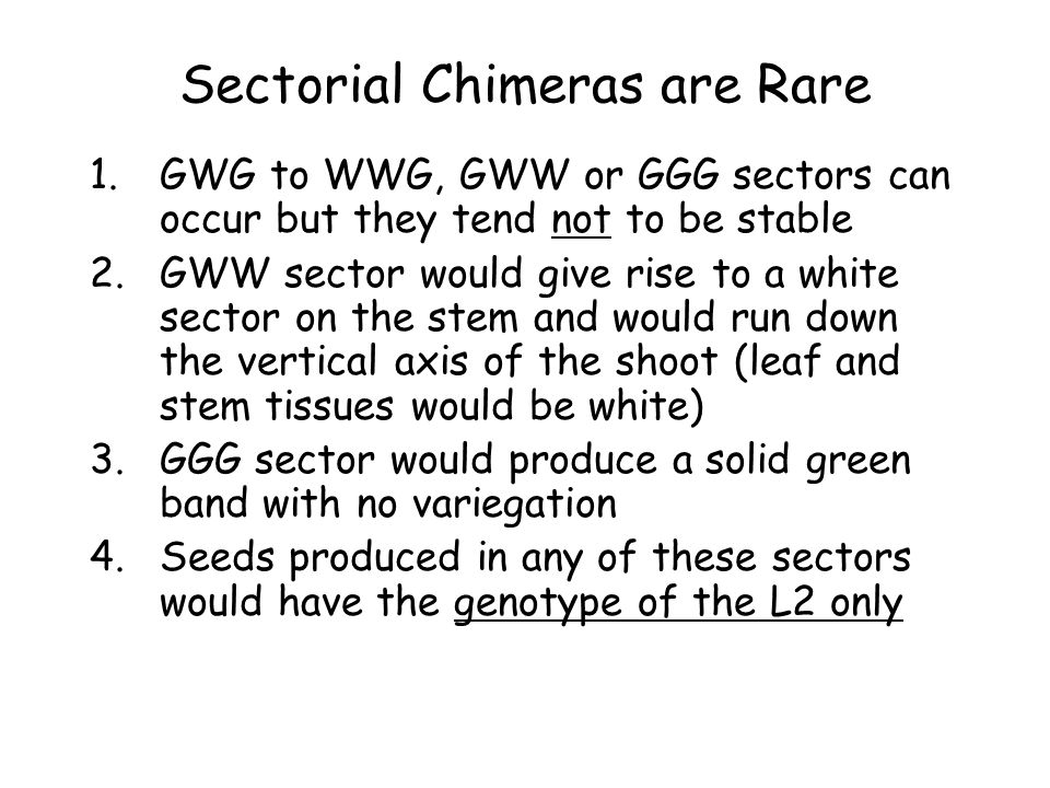 Sectorial Chimeras are Rare