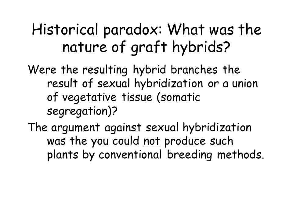 Historical paradox: What was the nature of graft hybrids