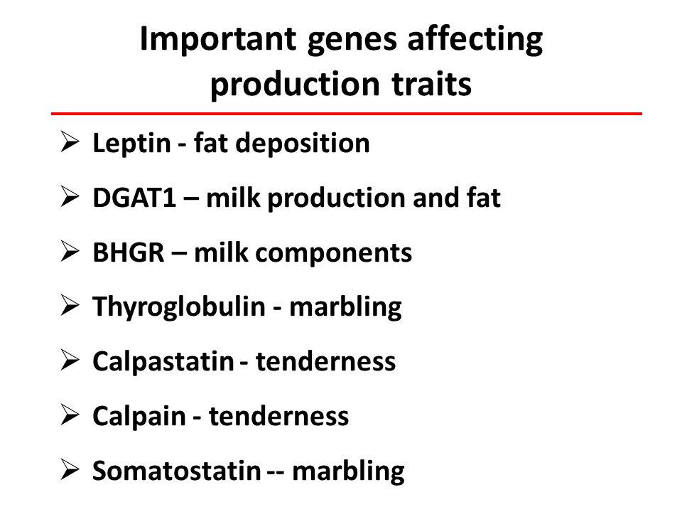 Important genes affecting production traits