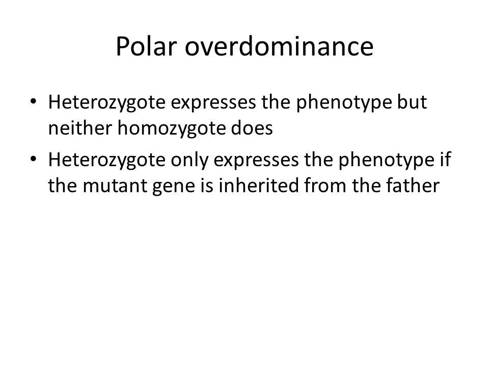 Polar overdominance Heterozygote expresses the phenotype but neither homozygote does.