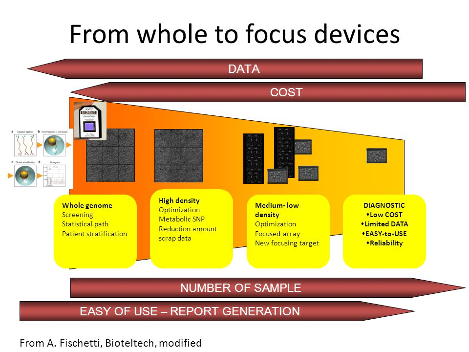 From whole to focus devices