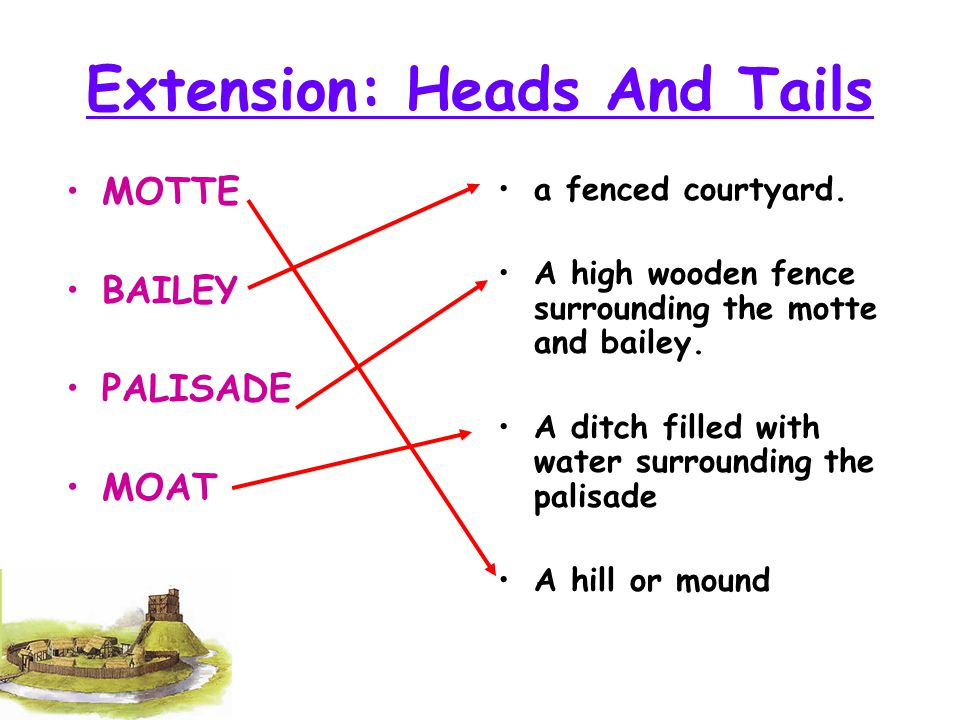 Extension: Heads And Tails