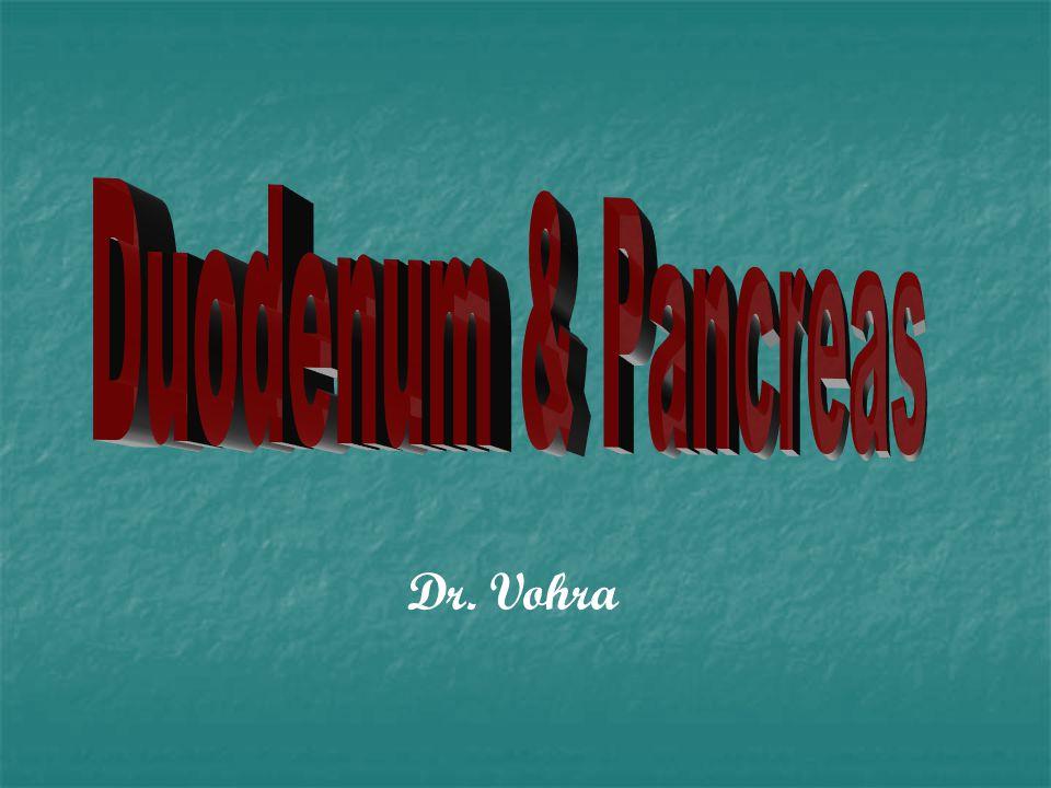 Duodenum & Pancreas Dr. Vohra