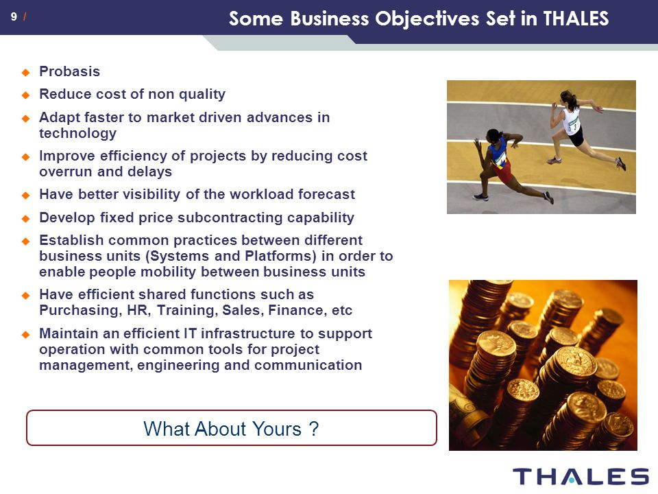 Some Business Objectives Set in THALES