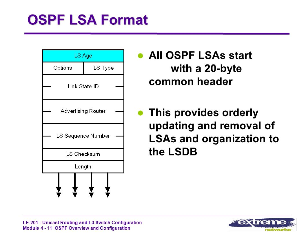 OSPF LSA Format All OSPF LSAs start with a 20-byte common header