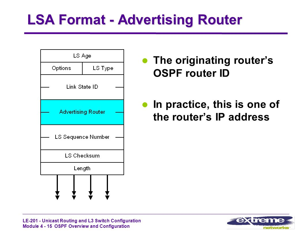 LSA Format - Advertising Router