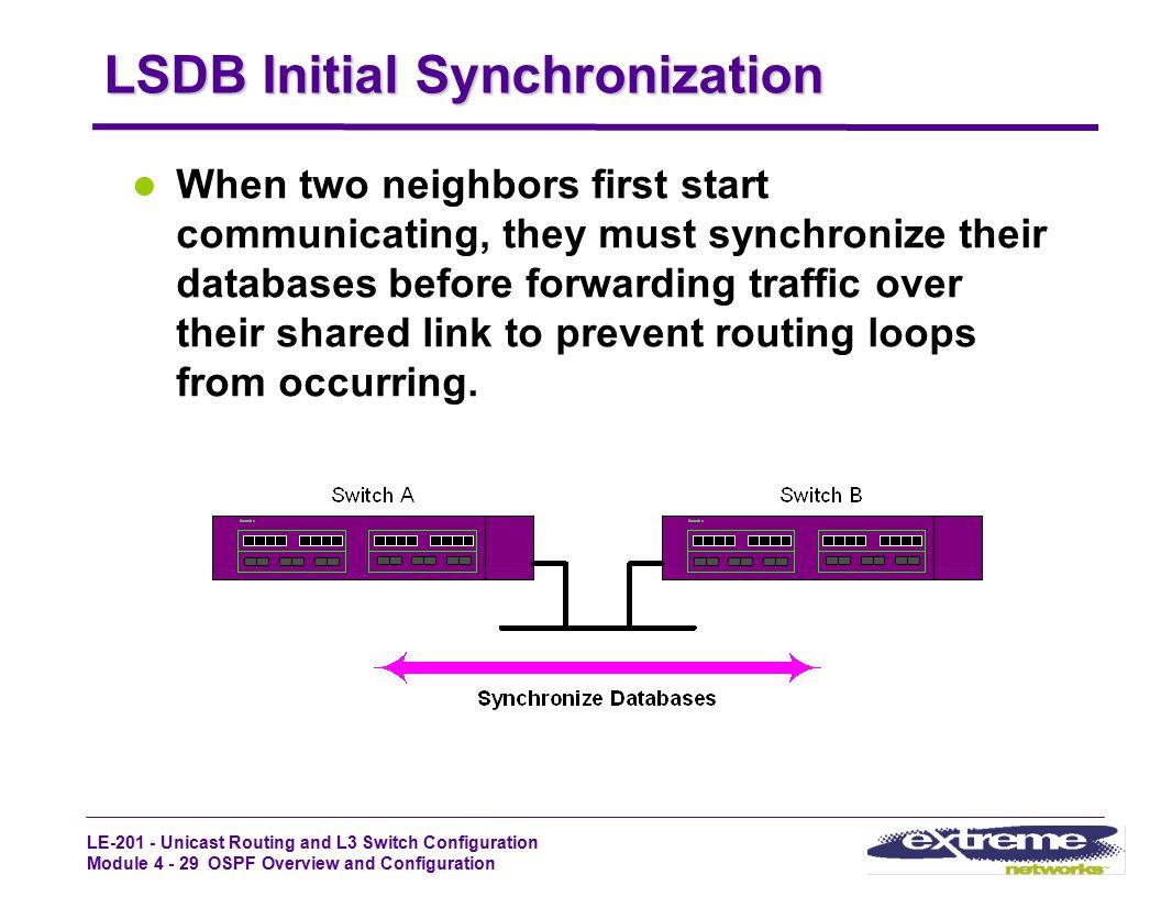 LSDB Initial Synchronization