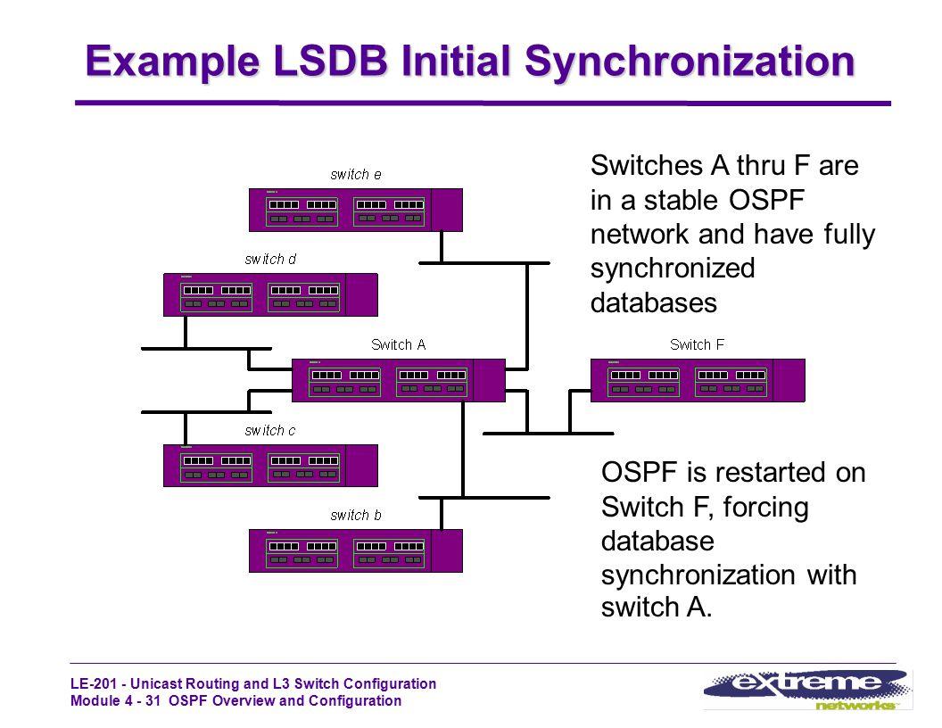 Example LSDB Initial Synchronization