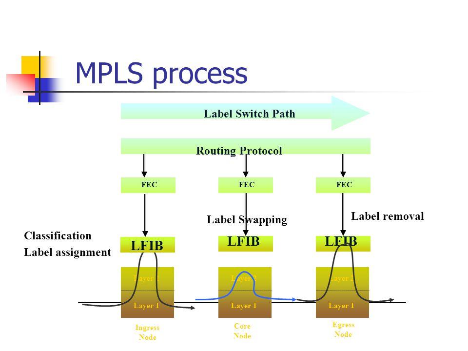 MPLS process LFIB LFIB LFIB Label Switch Path Routing Protocol