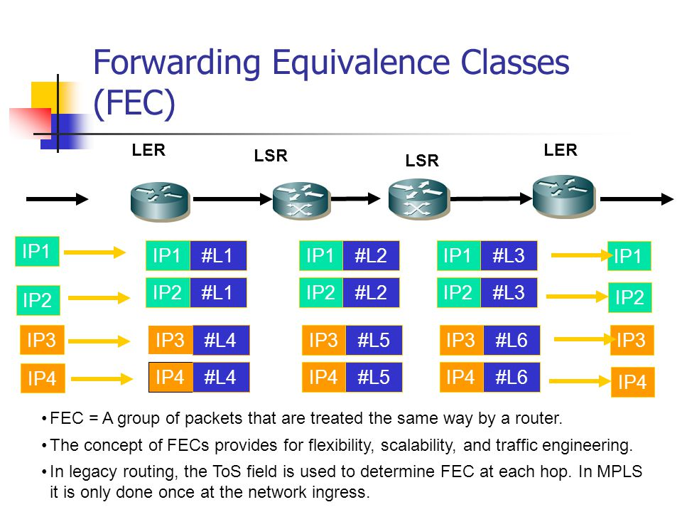 Forwarding Equivalence Classes (FEC)
