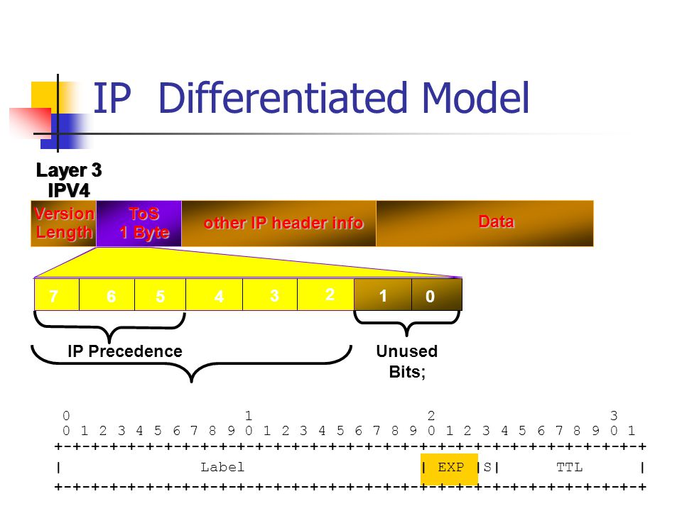 IP Differentiated Model