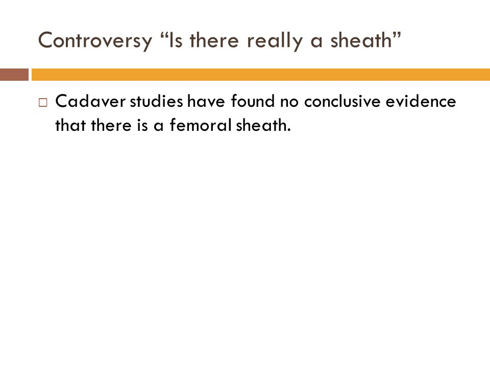 Controversy Is there really a sheath