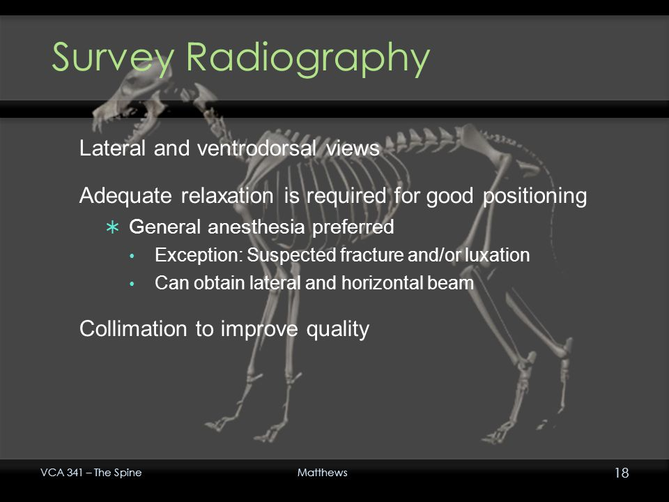 Survey Radiography Lateral and ventrodorsal views