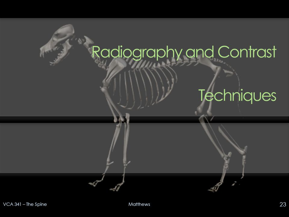 Radiography and Contrast Techniques