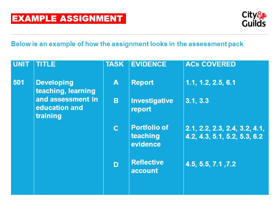EXAMPLE ASSIGNMENT UNIT 501 TITLE