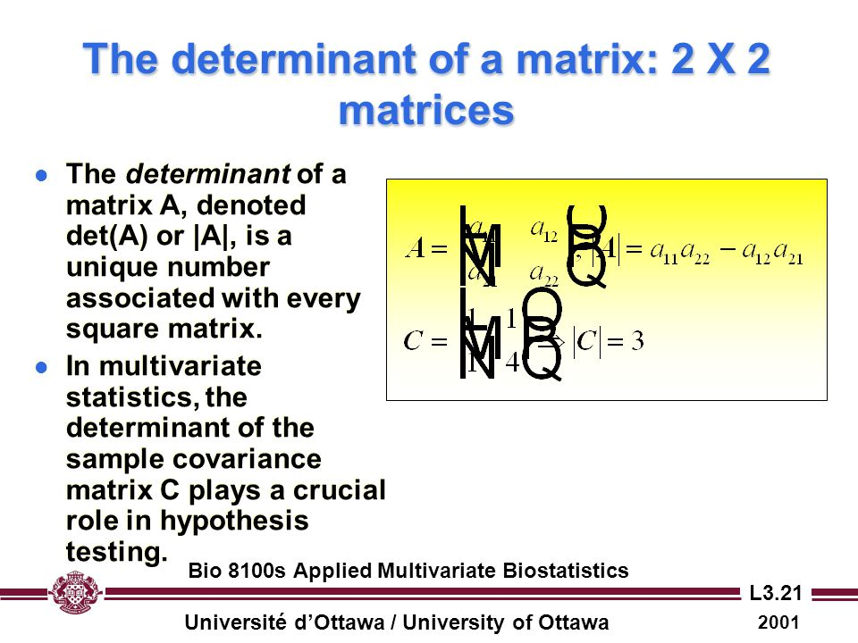 The determinant of a matrix: 2 X 2 matrices