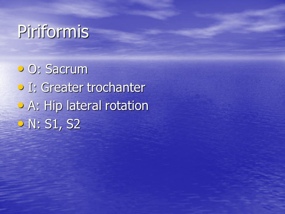 Piriformis O: Sacrum I: Greater trochanter A: Hip lateral rotation