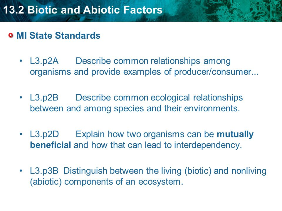 MI State Standards L3.p2A Describe common relationships among organisms and provide examples of producer/consumer...