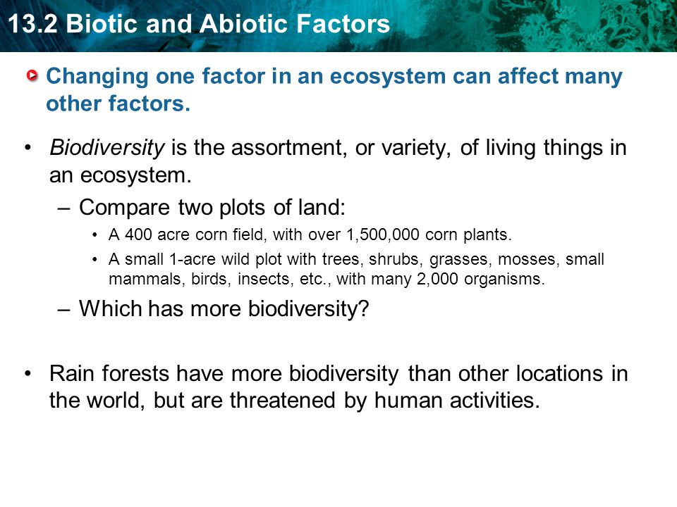Changing one factor in an ecosystem can affect many other factors.