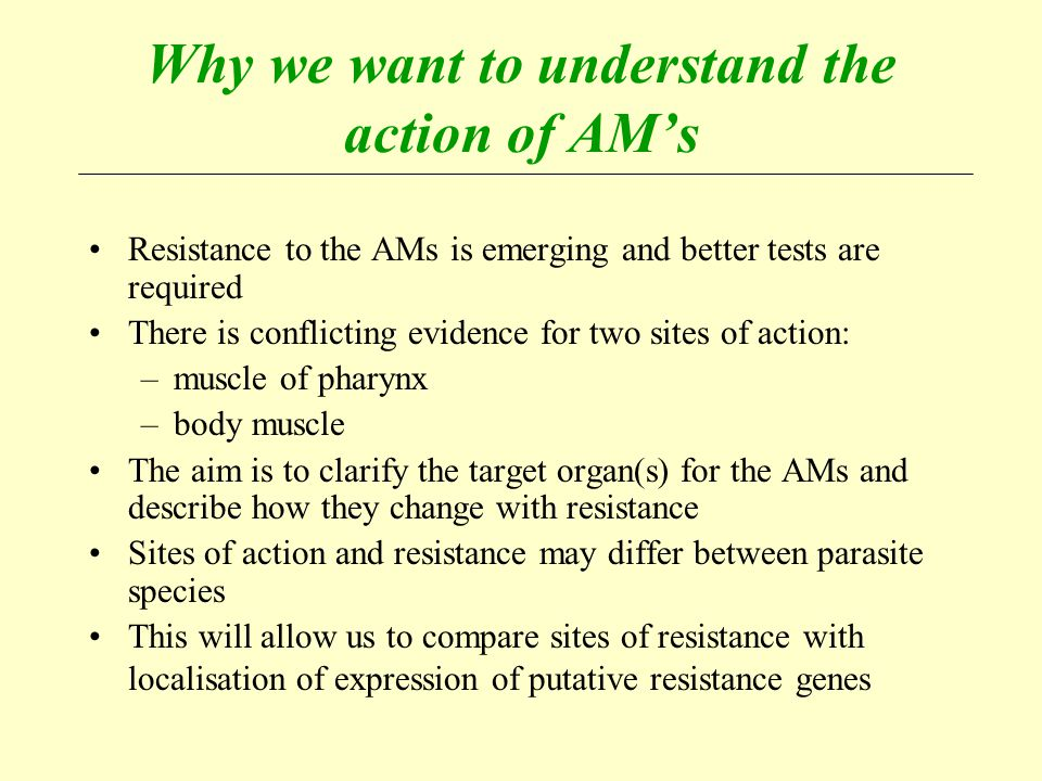 Why we want to understand the action of AM's