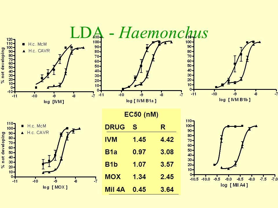 LDA - Haemonchus EC50 (nM) DRUG S R IVM 1.45 4.42 B1a 0.97 3.08