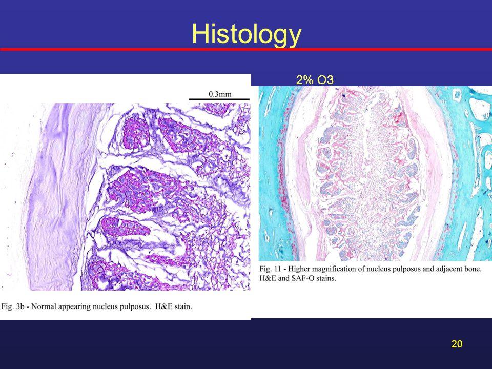 Histology 2% O3 2% O3