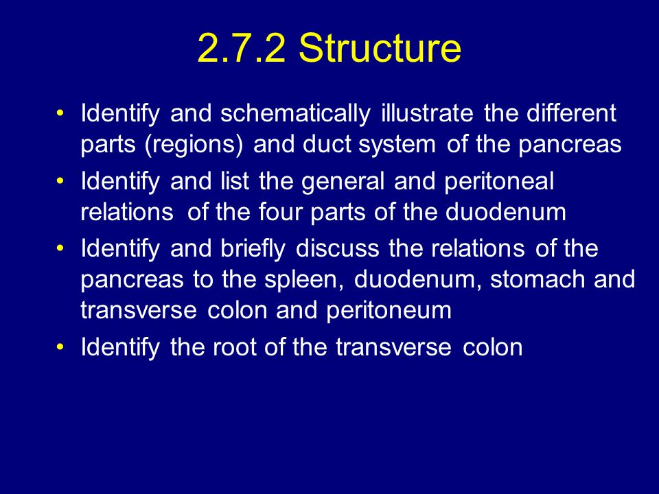 2.7.2 Structure Identify and schematically illustrate the different parts (regions) and duct system of the pancreas.