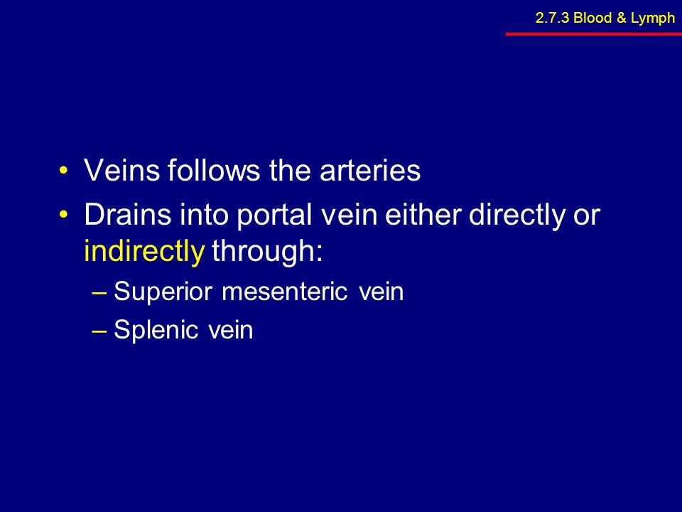 Veins follows the arteries