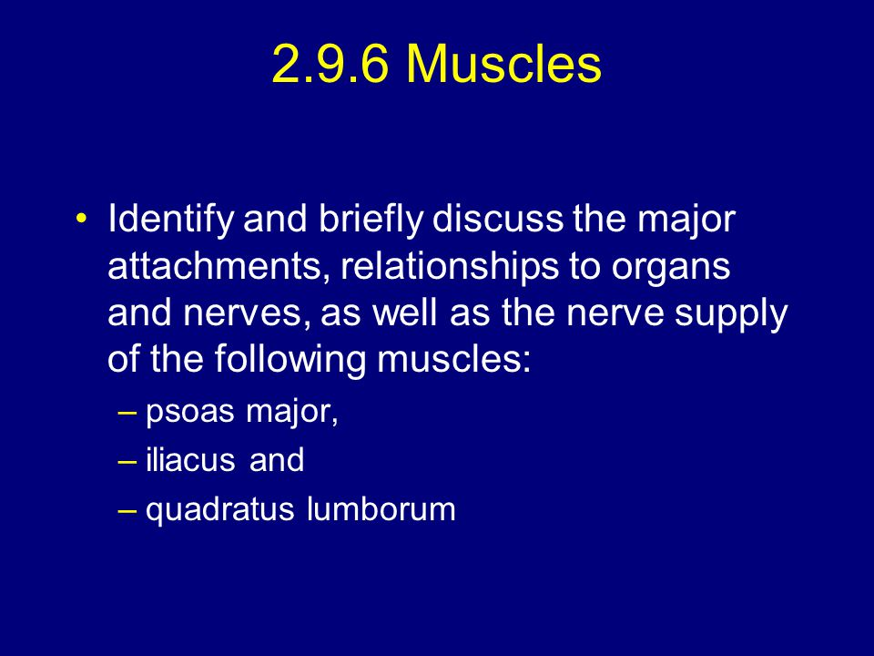 2.9.6 Muscles