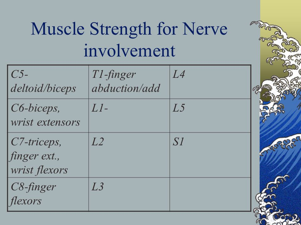 Muscle Strength for Nerve involvement