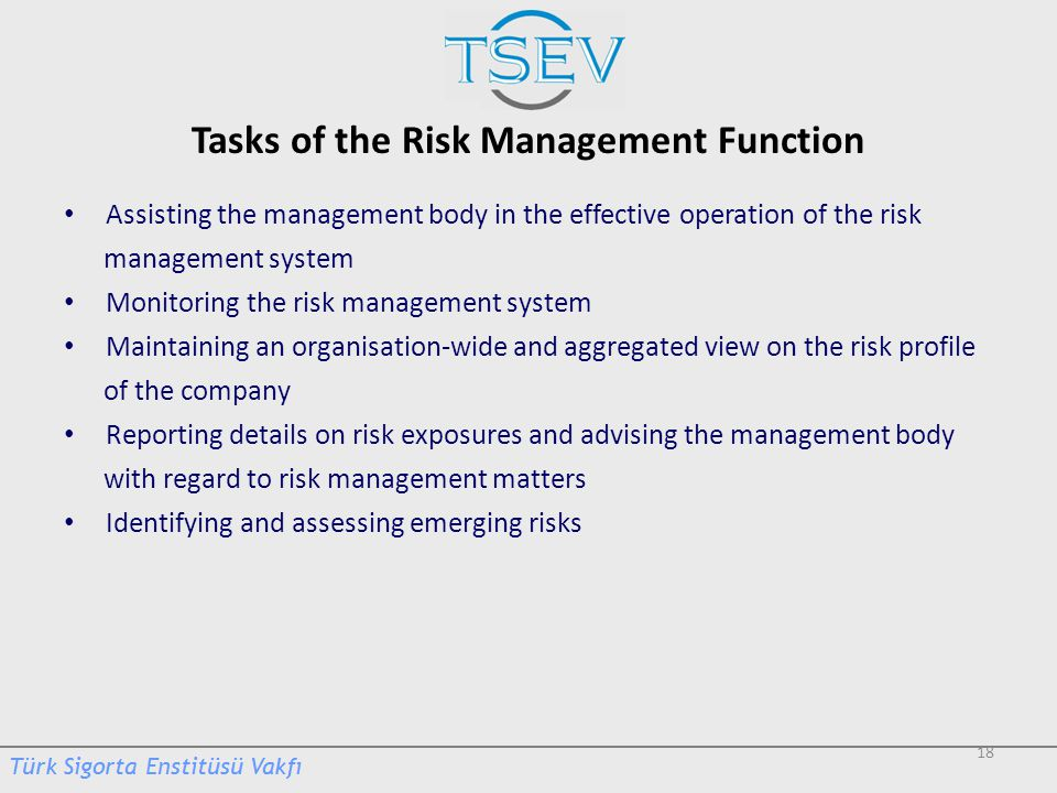 Tasks of the Risk Management Function