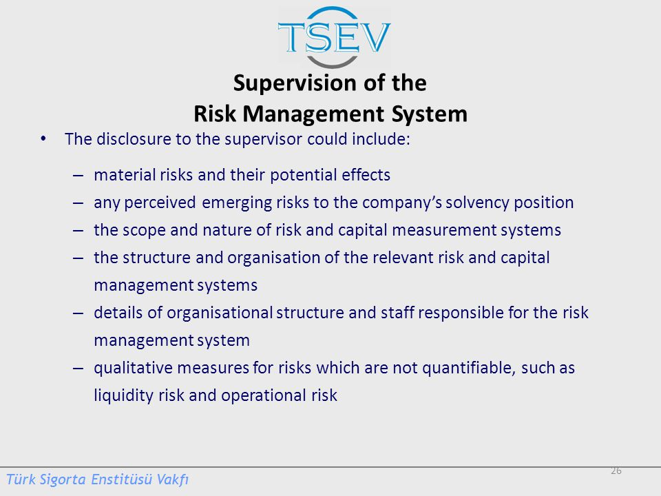Supervision of the Risk Management System