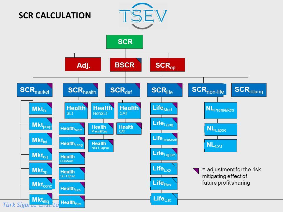SCR CALCULATION SCR Adj. BSCR SCRop SCRmarket SCRhealth SCRdef SCRlife