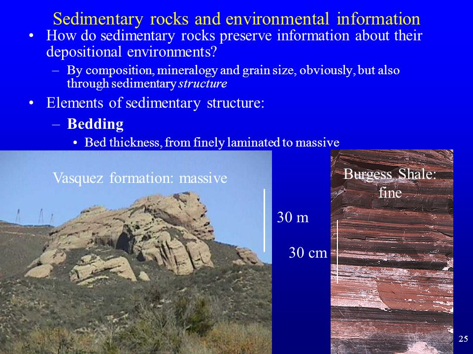 Sedimentary rocks and environmental information