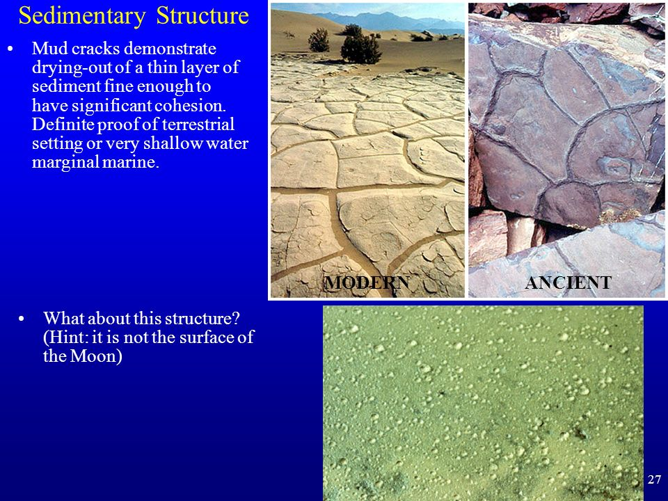 Sedimentary Structure