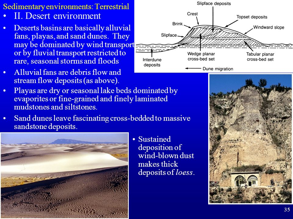sedimentary environments Focus on sedimentary environments the study of depositional processes and environments at scales from the landscape to the microscope.