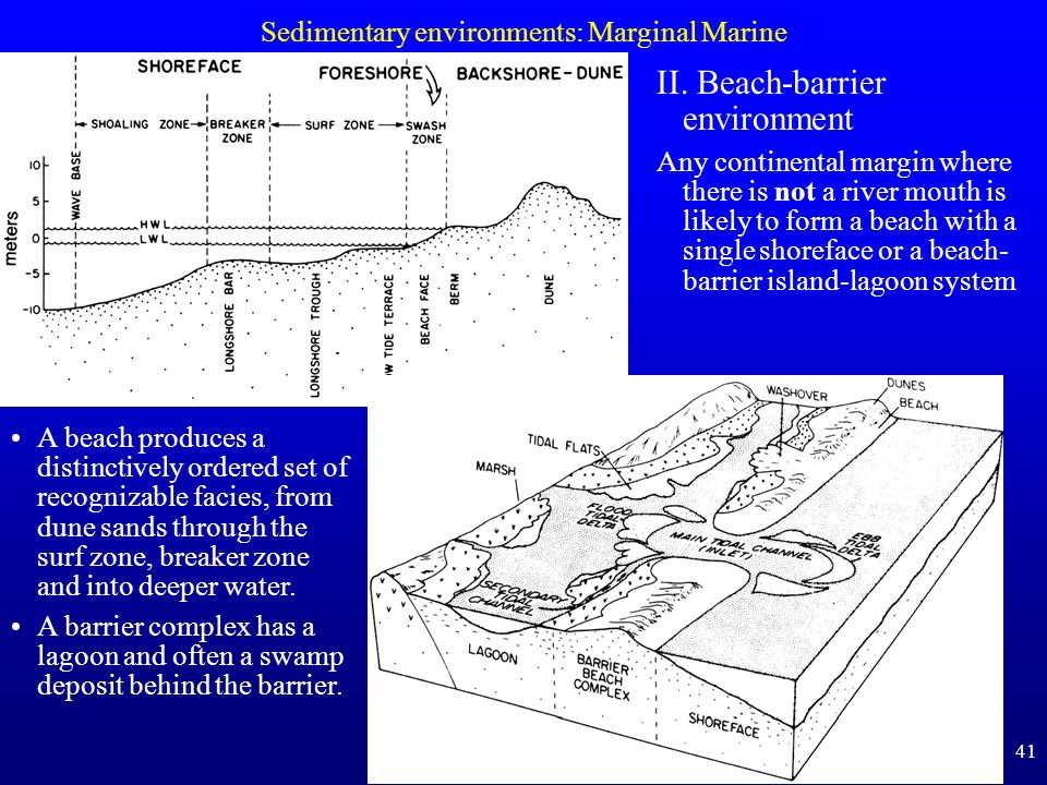 Sedimentary environments: Marginal Marine