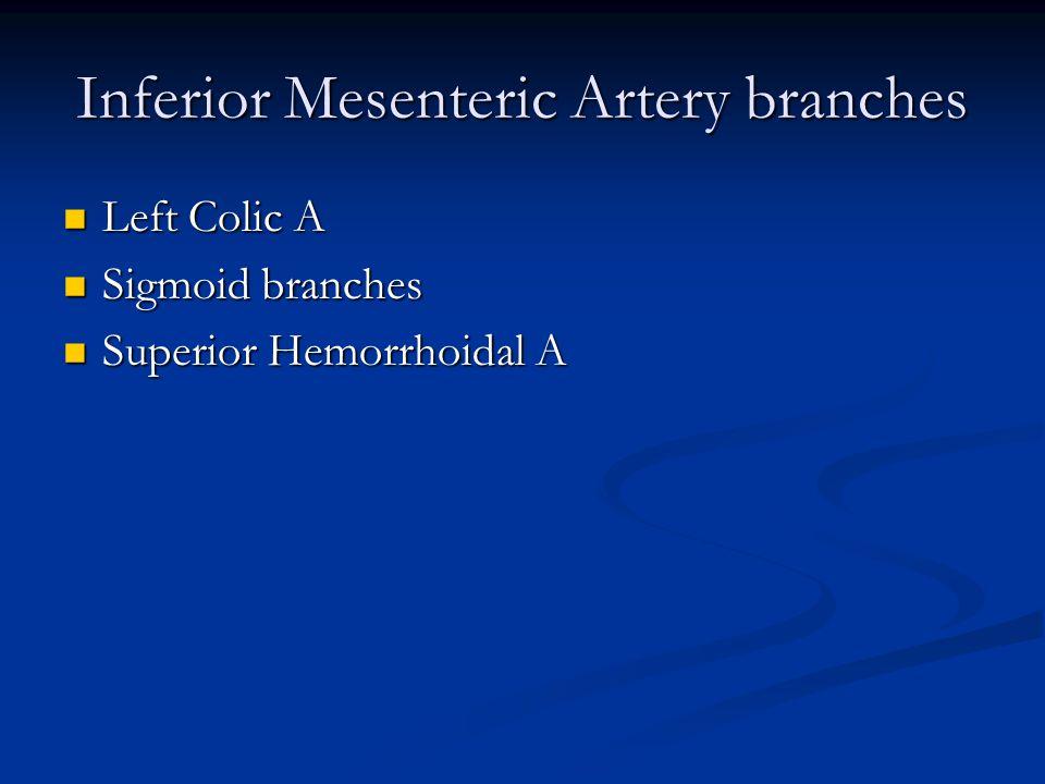 Inferior Mesenteric Artery branches