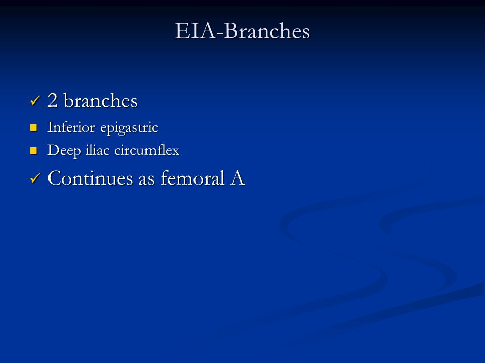 EIA-Branches 2 branches Continues as femoral A Inferior epigastric