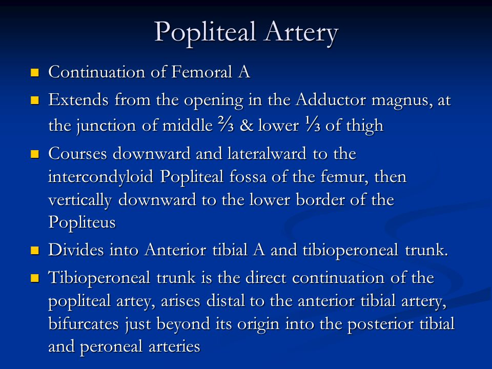 Popliteal Artery Continuation of Femoral A