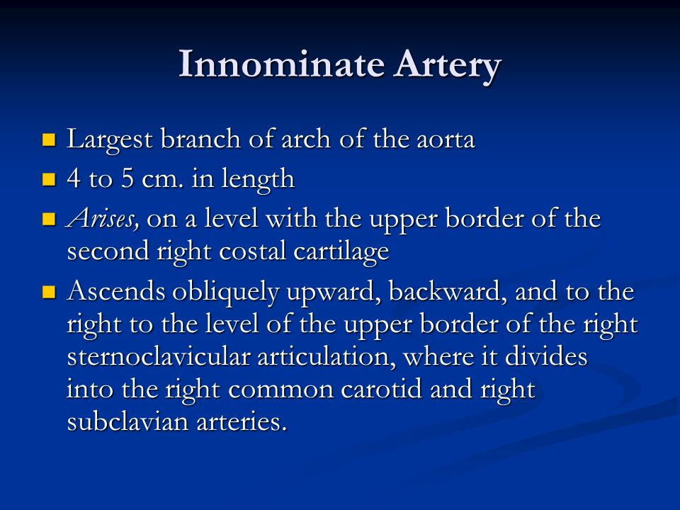 Innominate Artery Largest branch of arch of the aorta