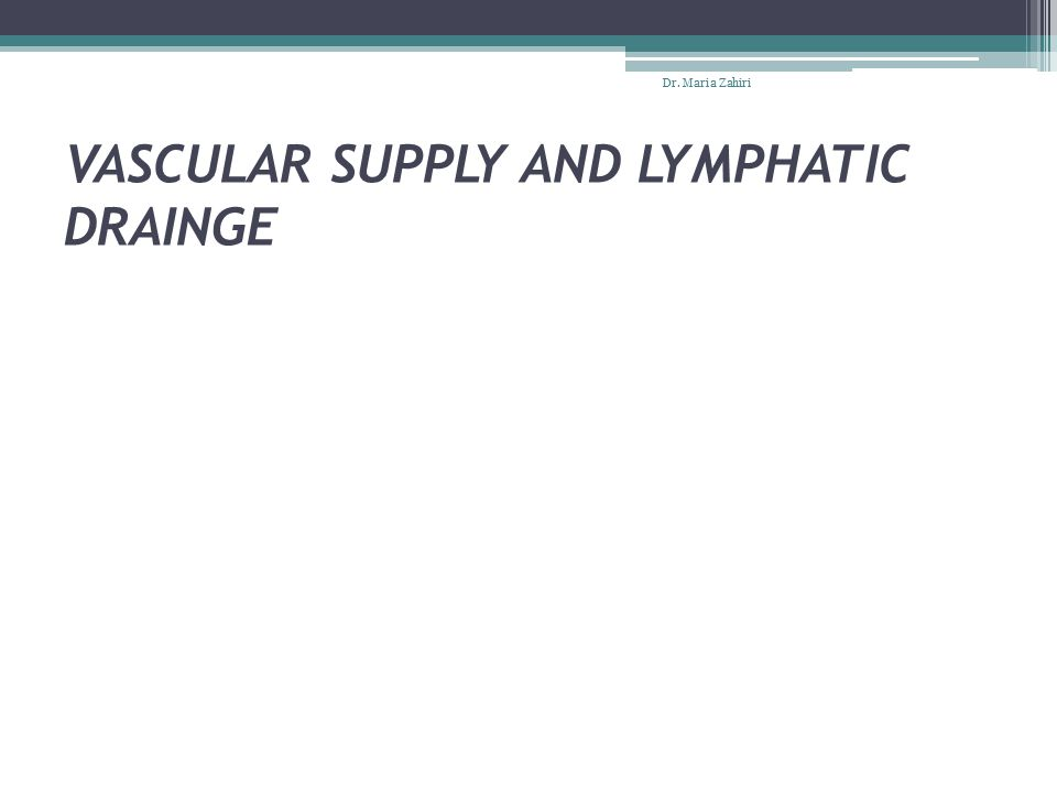 VASCULAR SUPPLY AND LYMPHATIC DRAINGE