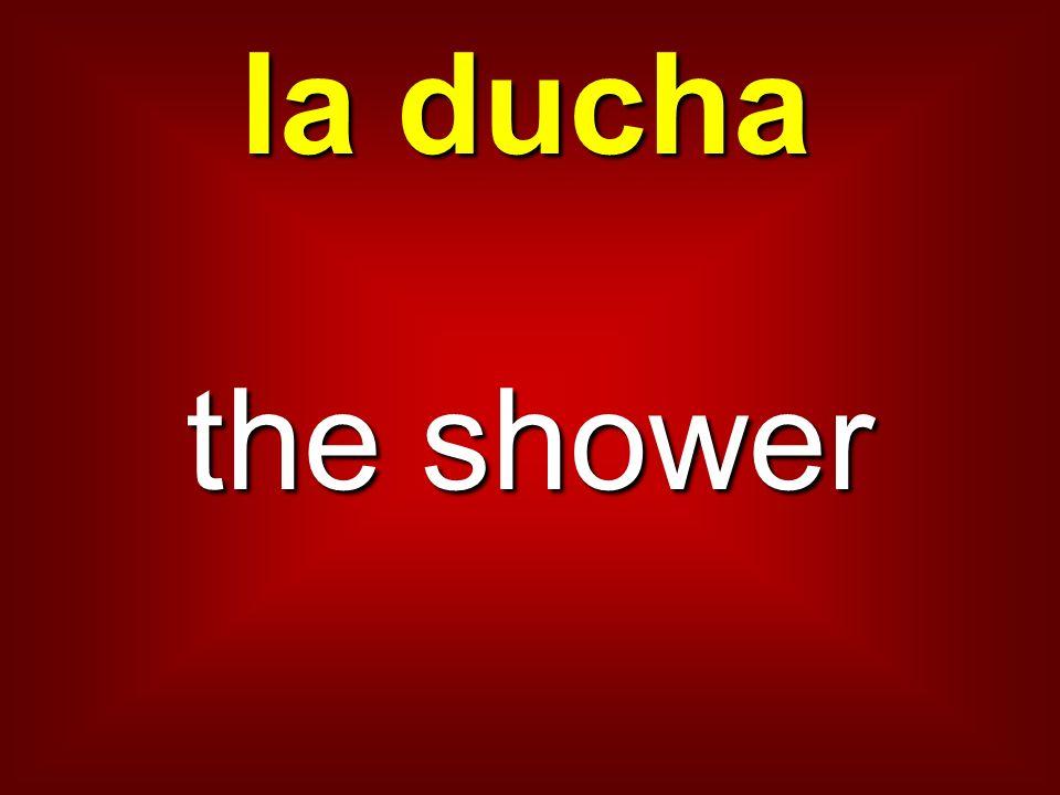 la ducha the shower