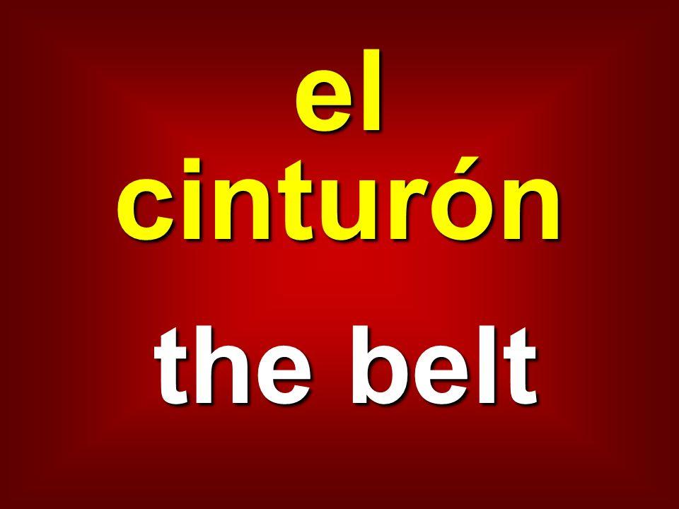 el cinturón the belt